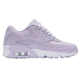 "Buty Nike Air Max 90 Se Mesh (GS) ""Violet Mist"" (880305-500)"